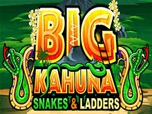 Онлайн автомат Big Kahuna Snakes And Ladders
